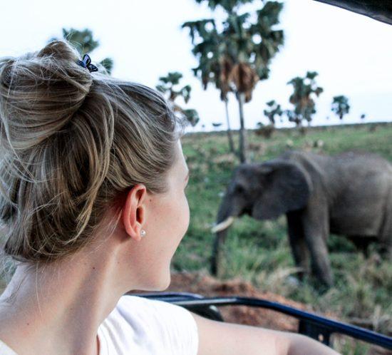 Julia watching Elephants Murchison Falls National Park