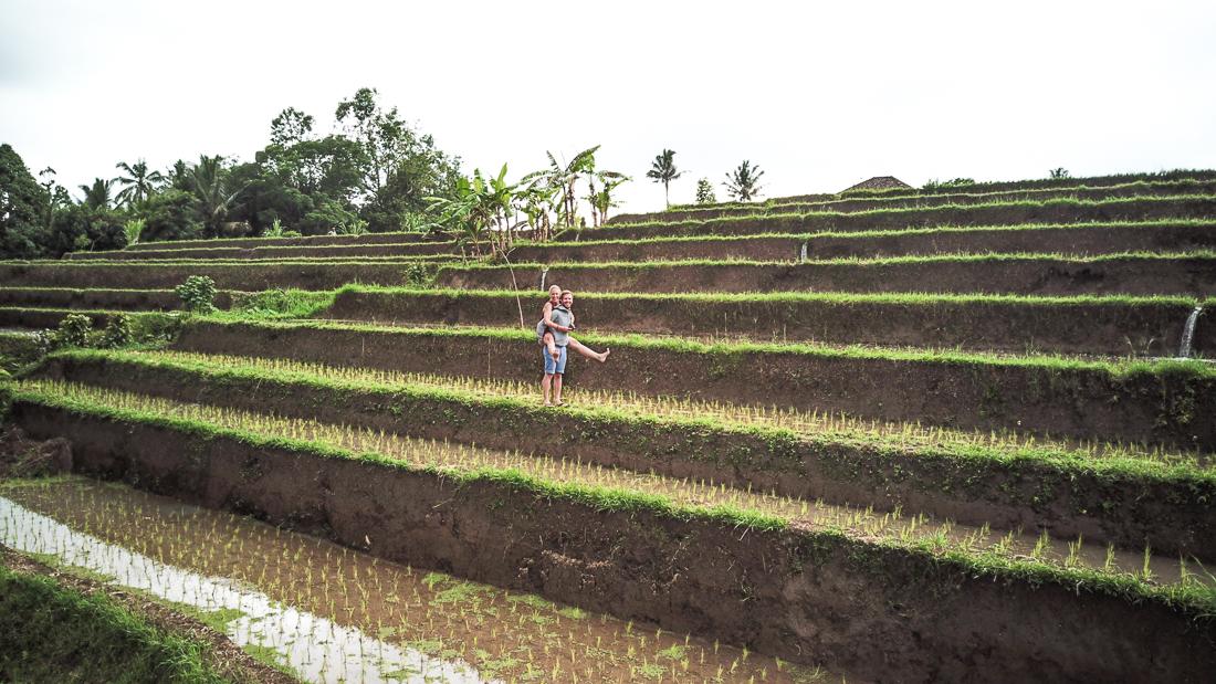 Jatiluwih Rice Terraces Berni Julia