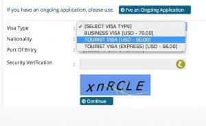 Myanmar eVisa Visa Type