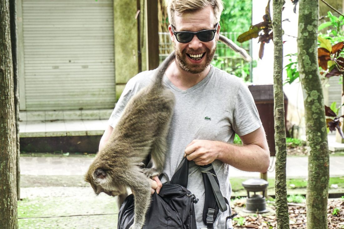 Monkey attacking Bernis Backpack
