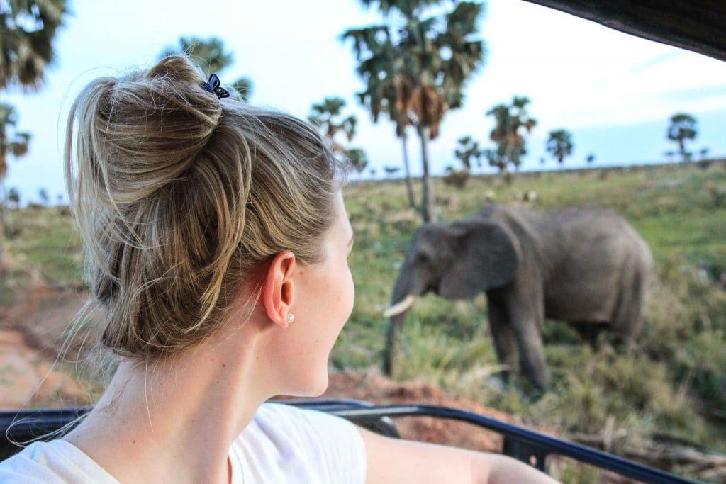 elephant-from-car-big-five-safari-uganda
